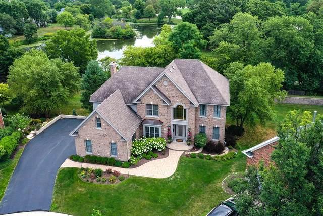 7 Nadelhoffer Court, Woodridge, IL 60517 (MLS #10481770) :: The Perotti Group | Compass Real Estate