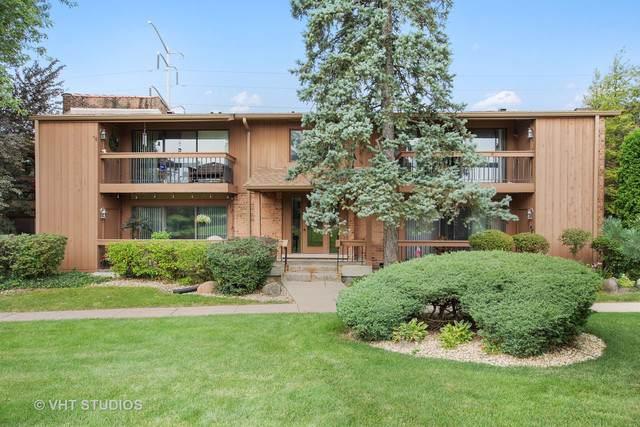 8066 S Garfield Avenue 11-3, Burr Ridge, IL 60527 (MLS #10481852) :: Berkshire Hathaway HomeServices Snyder Real Estate