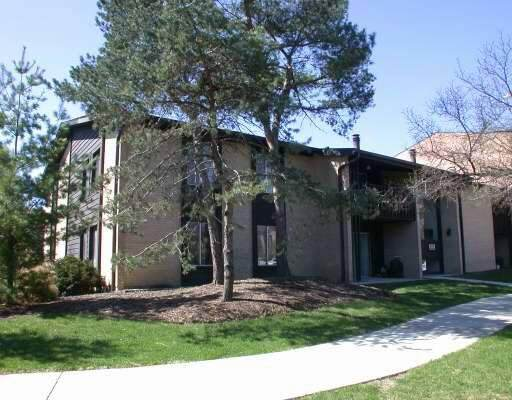 6175 Knoll Wood Road #201, Willowbrook, IL 60527 (MLS #10481941) :: Property Consultants Realty