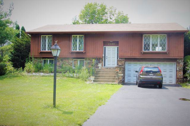 4540 Black Partridge Lane, Lisle, IL 60532 (MLS #10482010) :: Berkshire Hathaway HomeServices Snyder Real Estate