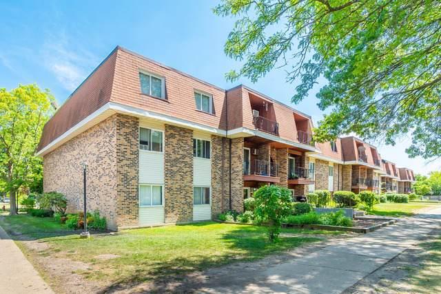 585 Hill Drive #315, Hoffman Estates, IL 60169 (MLS #10482095) :: Angela Walker Homes Real Estate Group