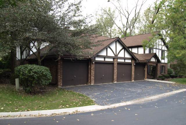 11318 Sycamore Lane 68C, Palos Hills, IL 60465 (MLS #10482637) :: The Wexler Group at Keller Williams Preferred Realty