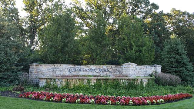 9406 Thousand Oaks Circle, Spring Grove, IL 60081 (MLS #10482772) :: Littlefield Group
