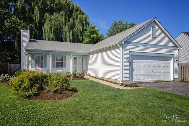 293 Deer Run Drive, Hainesville, IL 60030 (MLS #10482798) :: Angela Walker Homes Real Estate Group