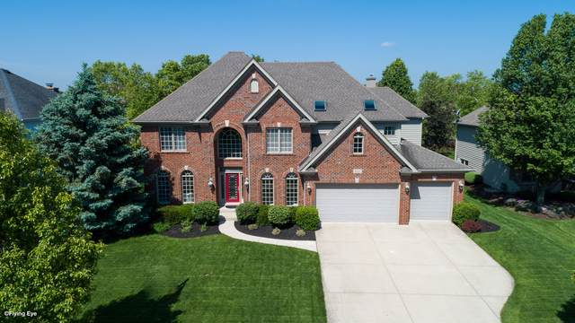 3647 Hector Lane, Naperville, IL 60564 (MLS #10483039) :: The Wexler Group at Keller Williams Preferred Realty