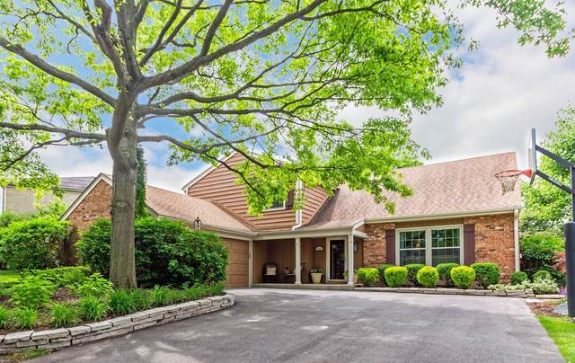 912 S Stonehedge Lane, Palatine, IL 60067 (MLS #10483637) :: Berkshire Hathaway HomeServices Snyder Real Estate