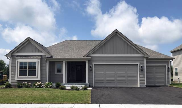 770 Richwood Avenue, Elgin, IL 60124 (MLS #10483690) :: Berkshire Hathaway HomeServices Snyder Real Estate