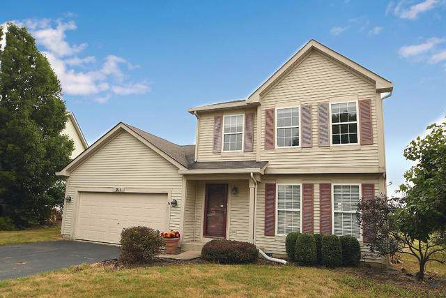 211 Summerfield Court, Romeoville, IL 60446 (MLS #10484678) :: The Wexler Group at Keller Williams Preferred Realty