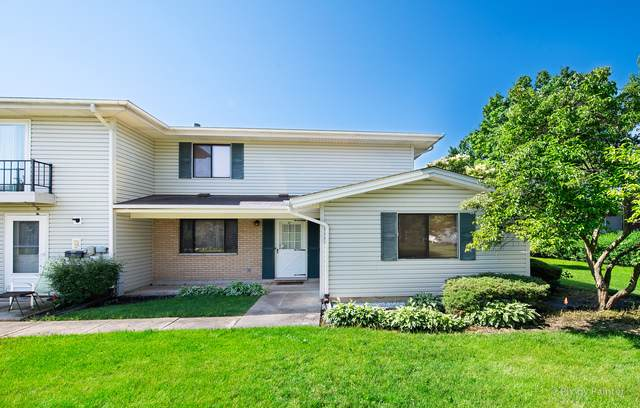234 Patuxet Court, Schaumburg, IL 60194 (MLS #10484776) :: Angela Walker Homes Real Estate Group