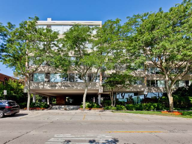 2020 St Johns Avenue #507, Highland Park, IL 60035 (MLS #10484903) :: The Dena Furlow Team - Keller Williams Realty