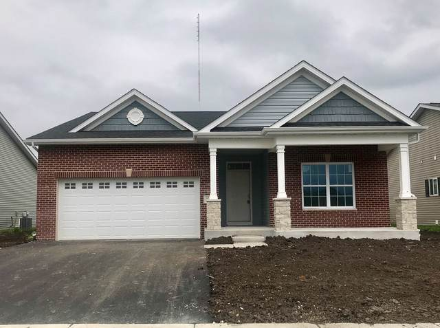 27318 Macura Street W, Channahon, IL 60410 (MLS #10485085) :: Property Consultants Realty
