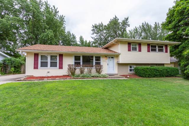 1323 Radcliffe Lane, Schaumburg, IL 60193 (MLS #10485197) :: The Wexler Group at Keller Williams Preferred Realty