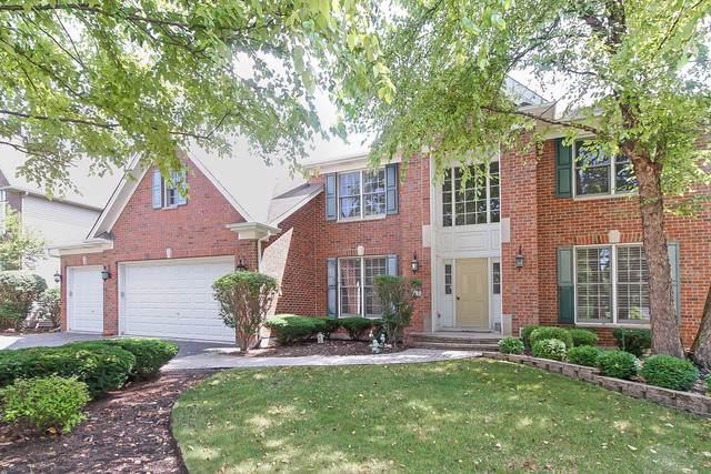551 Terrace Lane, South Elgin, IL 60177 (MLS #10485392) :: Suburban Life Realty