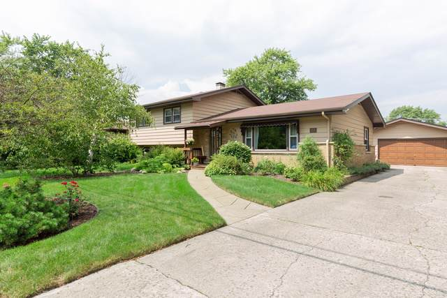 74 W 154th Street, South Holland, IL 60473 (MLS #10486131) :: The Wexler Group at Keller Williams Preferred Realty
