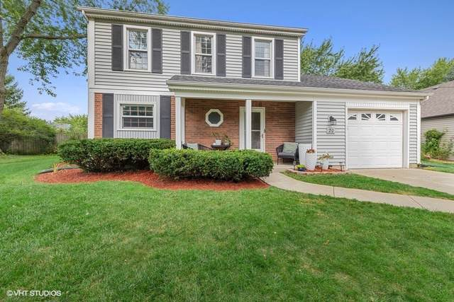 20 S Windsor Place, Mundelein, IL 60060 (MLS #10486146) :: Property Consultants Realty