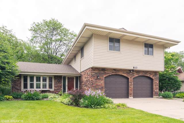 817 S Salem Drive, Schaumburg, IL 60193 (MLS #10486335) :: The Wexler Group at Keller Williams Preferred Realty