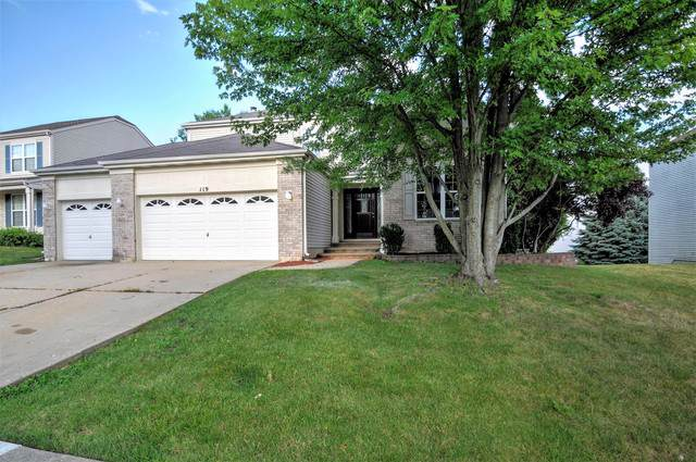 119 Buckskin Lane, Streamwood, IL 60107 (MLS #10486354) :: The Wexler Group at Keller Williams Preferred Realty