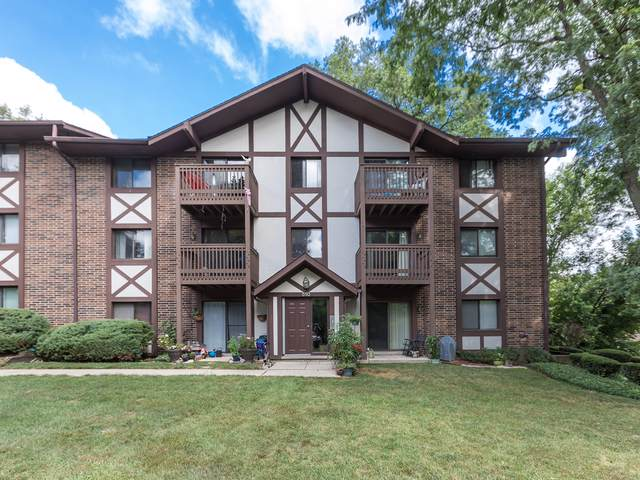 510 Taylor Avenue C, Glen Ellyn, IL 60137 (MLS #10486456) :: Property Consultants Realty