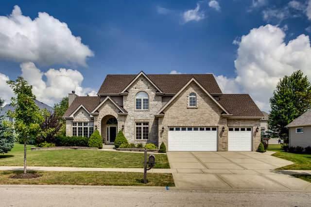 26519 Silverleaf Drive, Plainfield, IL 60585 (MLS #10486461) :: The Dena Furlow Team - Keller Williams Realty