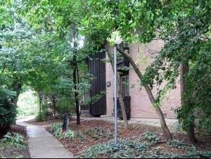 1613 Maple Terrace 1K, Lisle, IL 60532 (MLS #10486513) :: Angela Walker Homes Real Estate Group