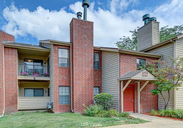1979 N Hicks Road #204, Palatine, IL 60074 (MLS #10486646) :: The Wexler Group at Keller Williams Preferred Realty