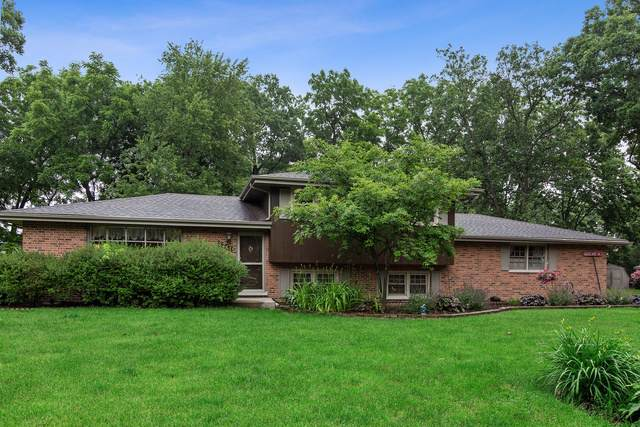22415 S Knyghtwood Drive, Shorewood, IL 60404 (MLS #10486781) :: Ani Real Estate