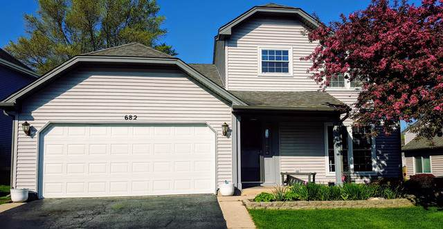 682 Packard Drive, Elgin, IL 60120 (MLS #10486998) :: Century 21 Affiliated
