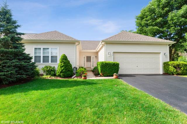 252 N Crooked Lake Lane, Lindenhurst, IL 60046 (MLS #10487048) :: Property Consultants Realty