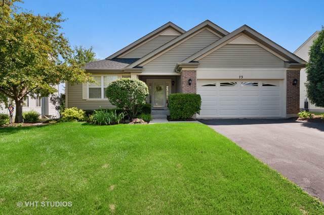 73 Bridlepath Drive, Lindenhurst, IL 60046 (MLS #10487214) :: Property Consultants Realty