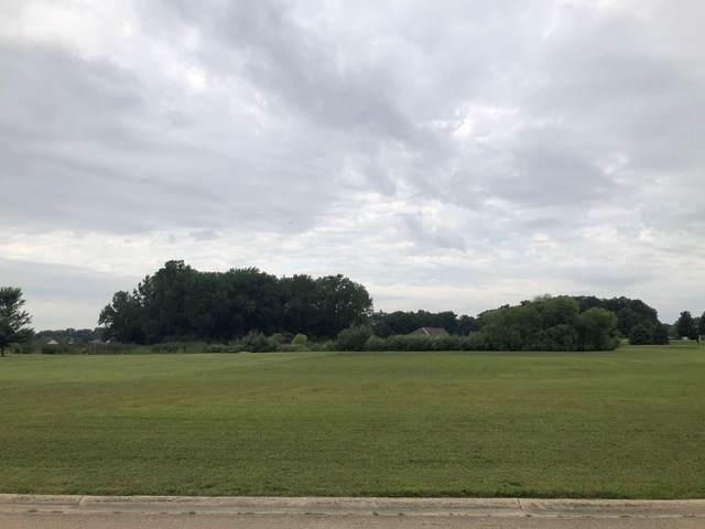 135 Fairway Drive, Essex, IL 60935 (MLS #10487332) :: Janet Jurich
