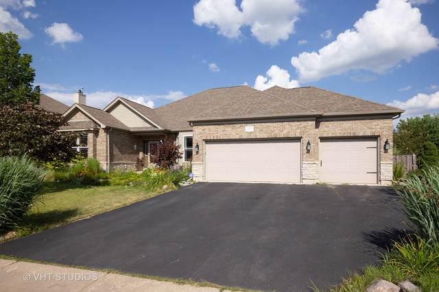 15537 S Indian Boundary Line Road, Plainfield, IL 60544 (MLS #10487397) :: The Dena Furlow Team - Keller Williams Realty