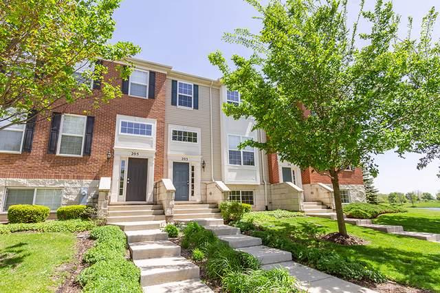 203 Jackson Street, Gilberts, IL 60136 (MLS #10487420) :: Suburban Life Realty