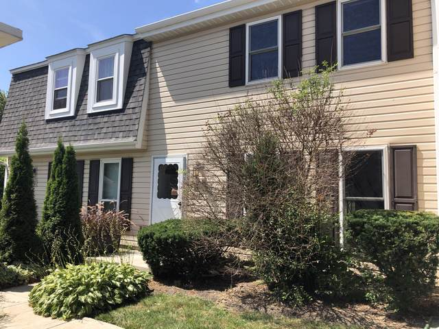 204 Rodenburg Road, Roselle, IL 60172 (MLS #10487486) :: The Wexler Group at Keller Williams Preferred Realty