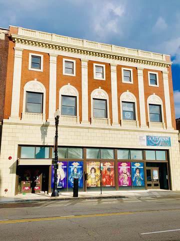 2229 Michigan Avenue, Chicago, IL 60616 (MLS #10487619) :: The Mattz Mega Group