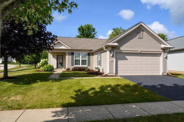 12045 Bloomfield Drive, Huntley, IL 60142 (MLS #10487685) :: Property Consultants Realty