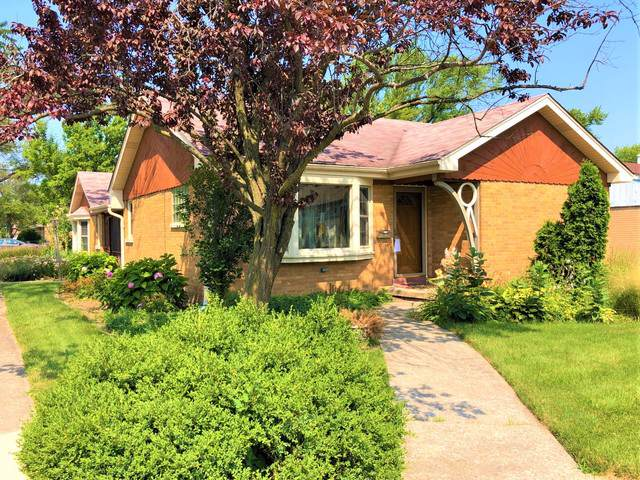 3146 Maple Avenue, Brookfield, IL 60513 (MLS #10487758) :: Angela Walker Homes Real Estate Group