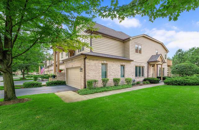 Willow Springs, IL 60480 :: The Wexler Group at Keller Williams Preferred Realty