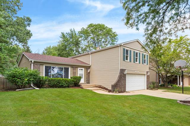 6S130 Country Drive, Naperville, IL 60540 (MLS #10487914) :: Angela Walker Homes Real Estate Group