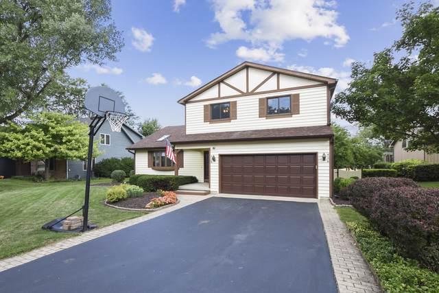 438 Patricia Court, Grayslake, IL 60030 (MLS #10487920) :: John Lyons Real Estate