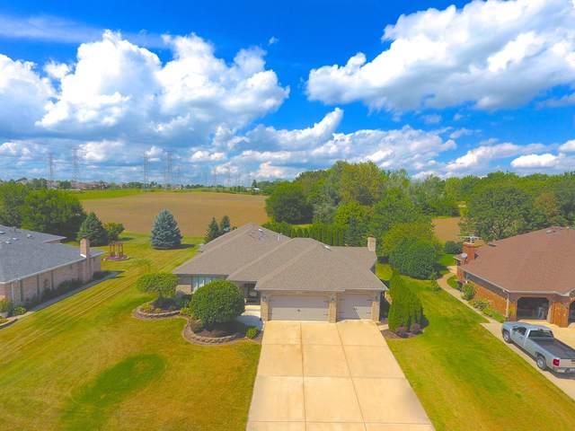 12860 W Beaver Lake Drive, Homer Glen, IL 60491 (MLS #10487940) :: Baz Realty Network   Keller Williams Elite