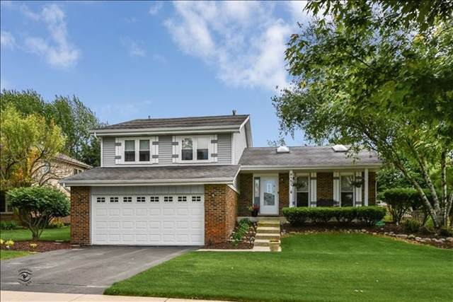 9151 Dewberry Lane, Orland Park, IL 60462 (MLS #10487953) :: Property Consultants Realty