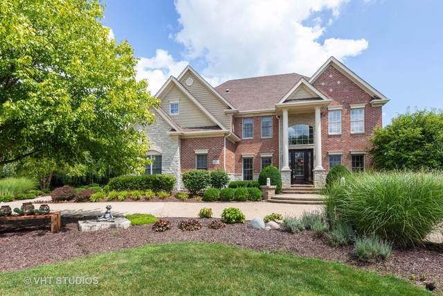 4771 Sassafras Lane, Naperville, IL 60564 (MLS #10488093) :: Property Consultants Realty