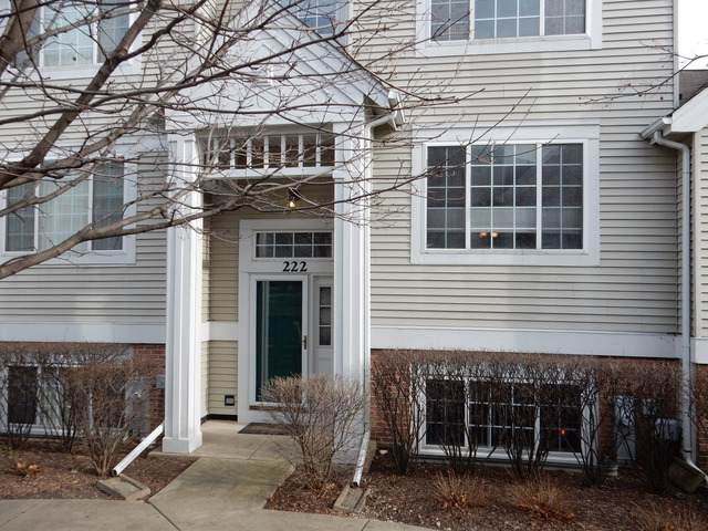 222 Polo Club Drive, Glendale Heights, IL 60139 (MLS #10488247) :: Property Consultants Realty