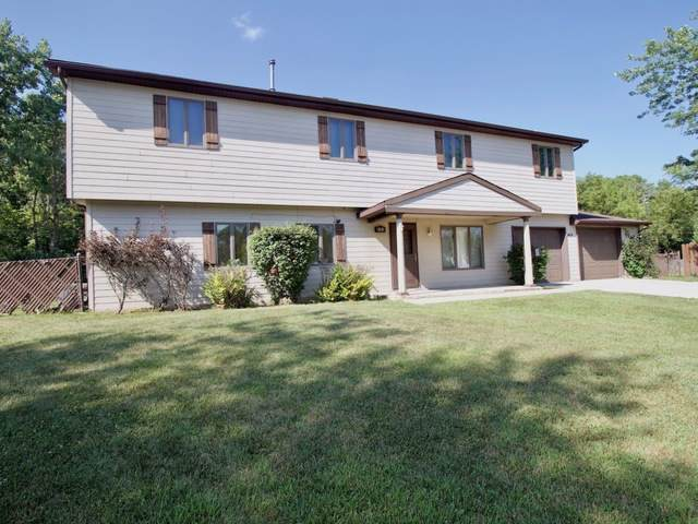 453 E Maple Court, Glenwood, IL 60425 (MLS #10488461) :: Property Consultants Realty