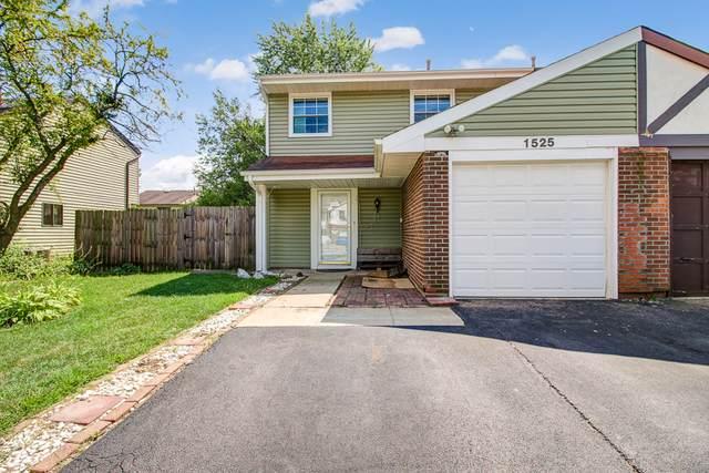 1525 N Merrimac Lane, Hanover Park, IL 60133 (MLS #10488537) :: Baz Realty Network | Keller Williams Elite
