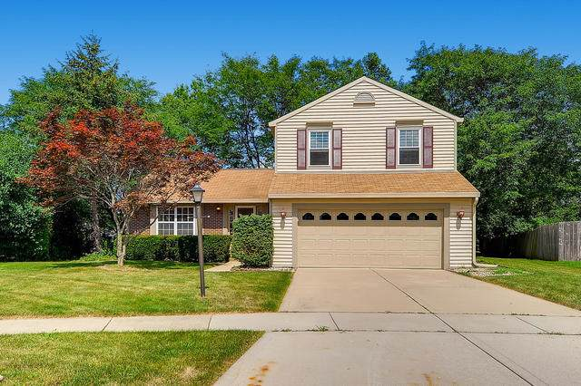 8 Kensington Court, Streamwood, IL 60107 (MLS #10488542) :: Ryan Dallas Real Estate