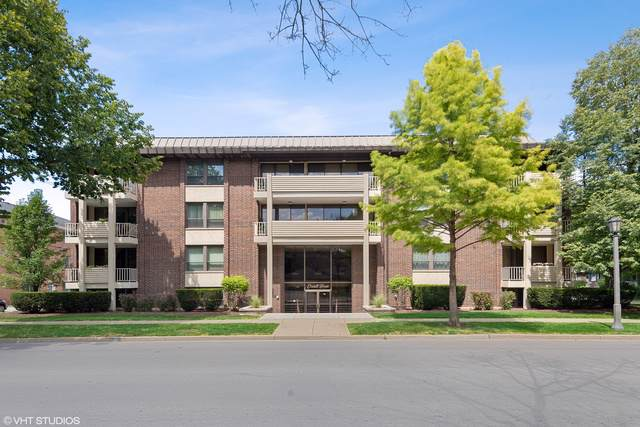 111 E Cossitt Avenue #206, La Grange, IL 60525 (MLS #10488560) :: The Wexler Group at Keller Williams Preferred Realty