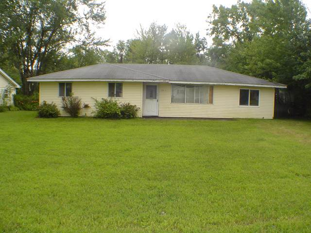 543 W Stanton Lane, Crete, IL 60417 (MLS #10488587) :: The Wexler Group at Keller Williams Preferred Realty