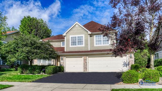1462 Maidstone Drive, Vernon Hills, IL 60061 (MLS #10488604) :: Property Consultants Realty