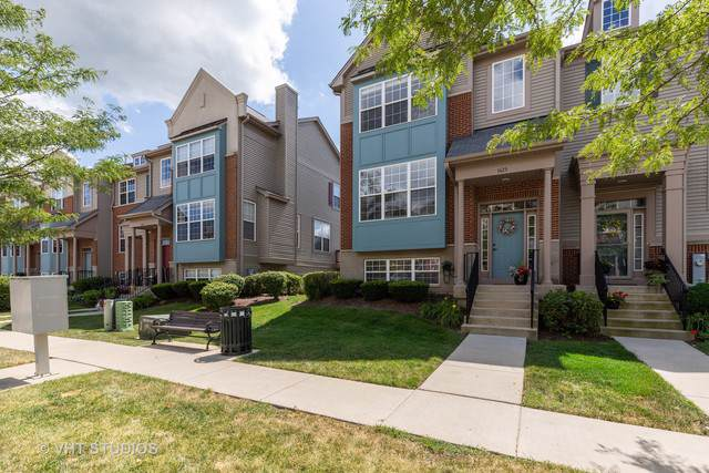 1623 Station Park Drive #1623, Grayslake, IL 60030 (MLS #10488661) :: Property Consultants Realty